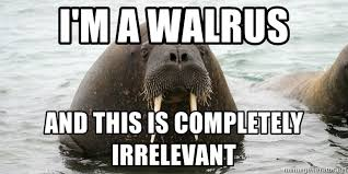 Walrus Meme - i m a walrus and this is completely irrelevant irrelevant walrus