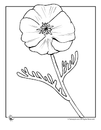 flower printable coloring sheets fantasy jr poppy flower