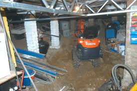 basement construction sydney pest control based como ausinspect