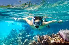 Hawaii snorkeling images 7 best snorkel spots in hawaii jpg