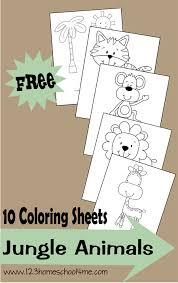 coloring sheets u2013 jungle animals