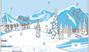 winter survival guide navigate especially in winter getting