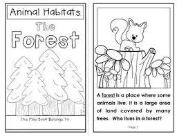 best 25 forest habitat ideas on pinterest forest crafts