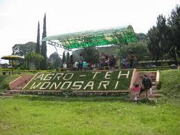 Teh Rolas Wonosari kebun teh wonosari lawang malang harga tiket masuk jalan menuju