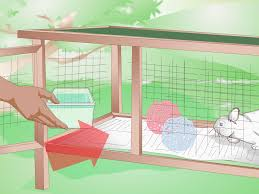Plans For Building A Rabbit Hutch Outdoor How To Build An Outdoor Rabbit Cage 10 Steps With Pictures