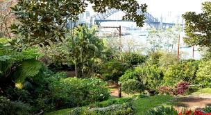 Botanical Garden Sydney by Sydney U0027s Top 6 Botanic Gardens Ellaslist