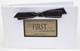 4x6 photo book grandchild gift photo brag book