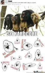 So Hardcore Meme - rmx so hardcore by granadosfelicia7 meme center
