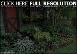 backyards splendid florida backyard landscaping backyard