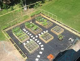 home vegetable garden design best home design ideas