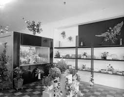 Flower Shop Interior Pictures Florida Memory Interior View Of Tillman U0027s Flower Shop In