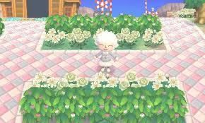 acnl shrubs a nice winter scene with gold pink purple and white roses a