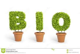 potted plants forming the word bio stock illustration image