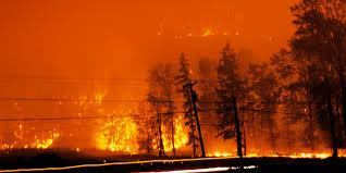 Wildfire Bc July 2015 by Wood Prices In Canada Might Increase Due To Western Wildfires