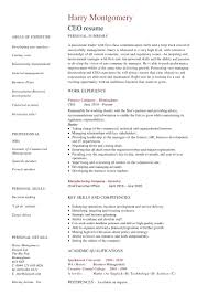 company resume exles 24 award winning ceo resume templates wisestep