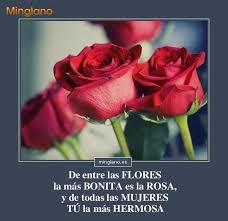 imagenes para enamorar con flores fotos de flores lindas con versos de amor poemas y versos de amor