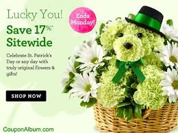 flower coupons 1 800 flowers coupon 17 st s day flowers gifts