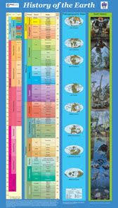 78 best evolution classification and biodiversity images on
