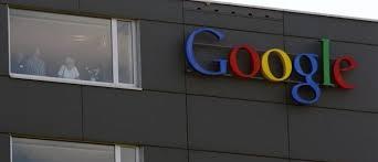 google zurich google s zurich office has a jungle themed meeting room world