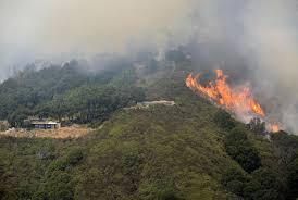 Wildfire Northern Colorado by Deadly Soberanes Fire North Of Big Sur Grows To 40 000 Acres La