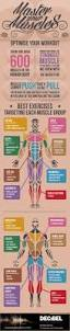 132 best physical therapy images on pinterest physical therapy