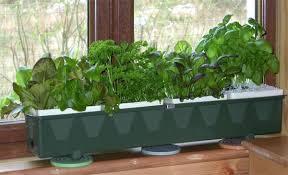 window planters indoor window sill planter indoor windowsill planter indoor indoor flower