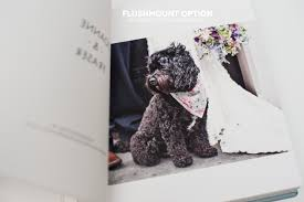 Pet Photo Albums Albums Eleanor Jane Wedding Photography U2022 Wedding Photographer