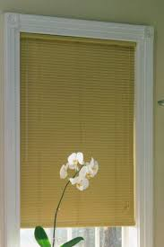 Mini Blinds Lowes Blinds Best Custom Blinds At Lowes Cheap Roman Shades Window