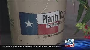 native houston plants consider native plants for low maintenance garden abc13 com