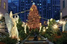 tis u0027 the season of huge christmas trees