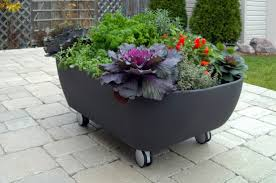 Bathtub Planter Mobile Bathtub Like Planter To Organize A Mobile Garden Digsdigs