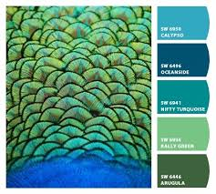 peacock feather color scheme home design u0026 architecture cilif com