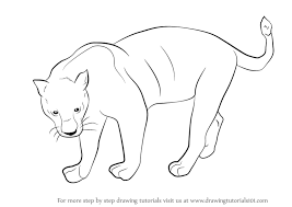 easy outlines of animals learn how to draw a black panther wild animals step by step