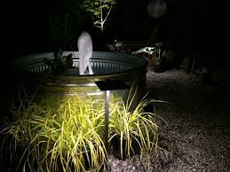 Houston Outdoor Lighting Outdoor Lighting Houston Best Of Philips Houston Outdoor Inox Wall