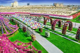 Image Flower Garden by Miracle Garden In Dubai Is Home To 45 Million Flowers Miracle
