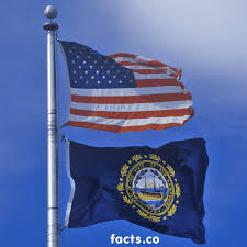 Join Or Die Flag Meaning New Hampshire Flag Colors New Hampshire Flag Meaning