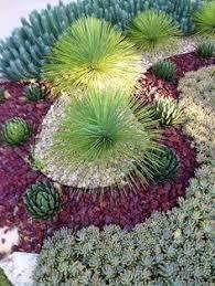 Desert Backyard Ideas Best 25 Desert Backyard Ideas On Pinterest Desert Landscaping