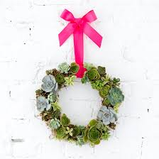how to make a succulent wreath you can hang all year round brit co