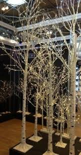 birch tree decor event prop hire led white birch tree 10ft warm white lights