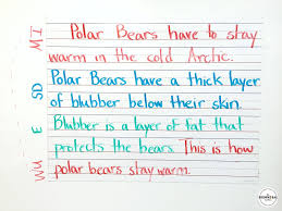 paragraph writing in 1st grade the brown bag teacher bloglovin u0027