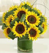 sunflower arrangements sunflower bouquet delivery dallas sunflowers arrangements