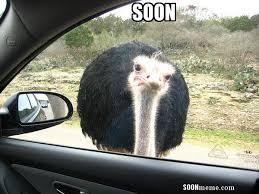 Soon Car Meme - soonmeme com soonmemecom twitter