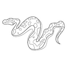 25 free printable snake coloring pages