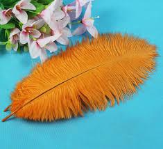 plumeau en plume d autruche achetez en gros autruche plume grossistes en ligne à des