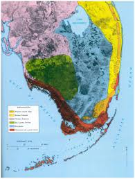 Western Florida Map by Sofia Pp 1011 Ecosystems Of South Florida Freshwater And