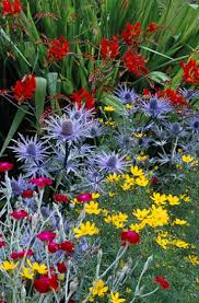 Beauty Garden by 12641 Best Flowers Images On Pinterest Flowers Plants And