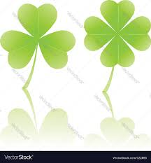 four leaf clover and shamrock royalty free vector image