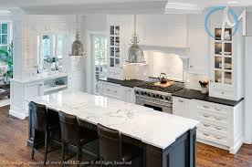 what color cabinets match black granite 15 amazing absolute black granite kitchen options kitchen