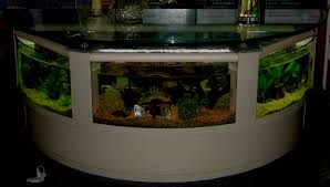 coffee table aquarium coffee table coffee table aquarium for sale shocking picture