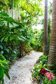 tropical garden ideas tropical landscaping home interiror and exteriro design home